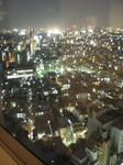 新宿方面の夜景.jpg
